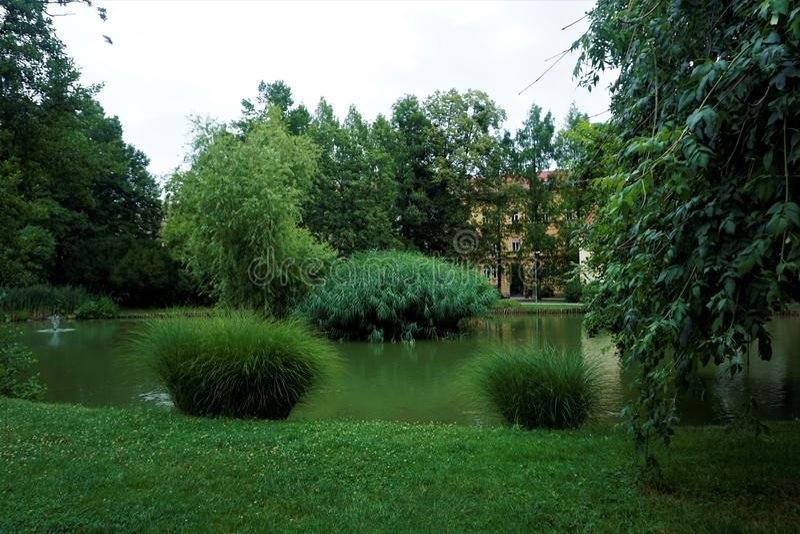 Пейзаж в парке mestni Марибора, Словении стоковое изображение