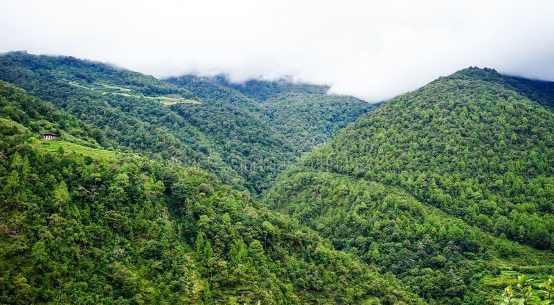 Пейзаж горы в Kingdoom Бутана стоковое фото rf