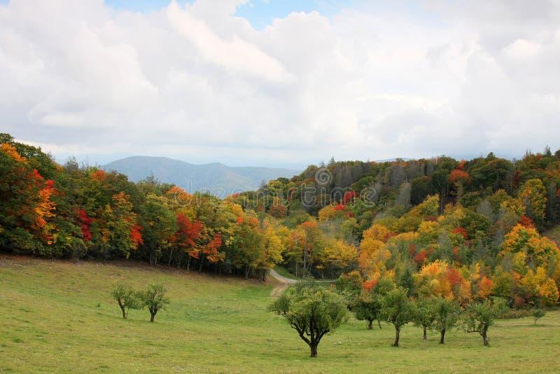 Download пейзаж горы закоптелый стоковое фото. изображение насчитывающей парк - 6852524