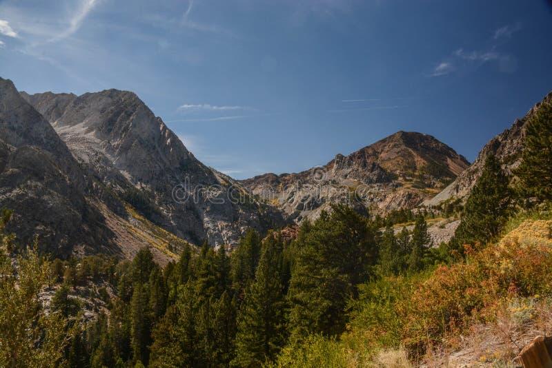 Пейзаж горы на дороге пропуска Tioga стоковая фотография rf