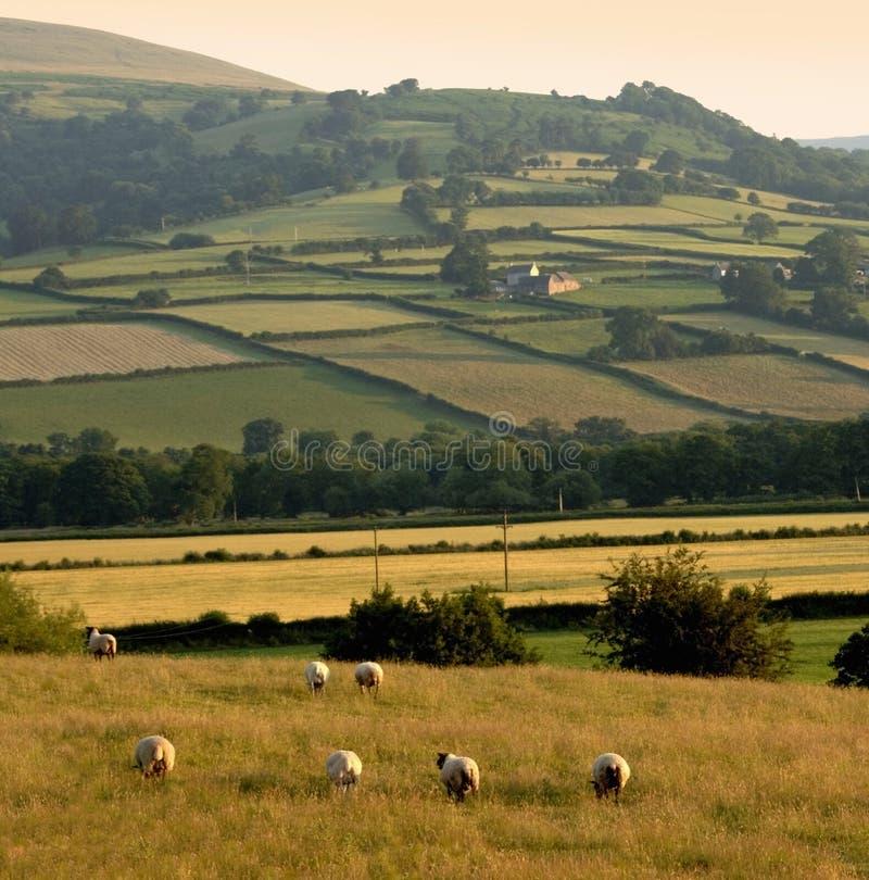 пейзаж гор ландшафта холмов сельской местности стоковая фотография