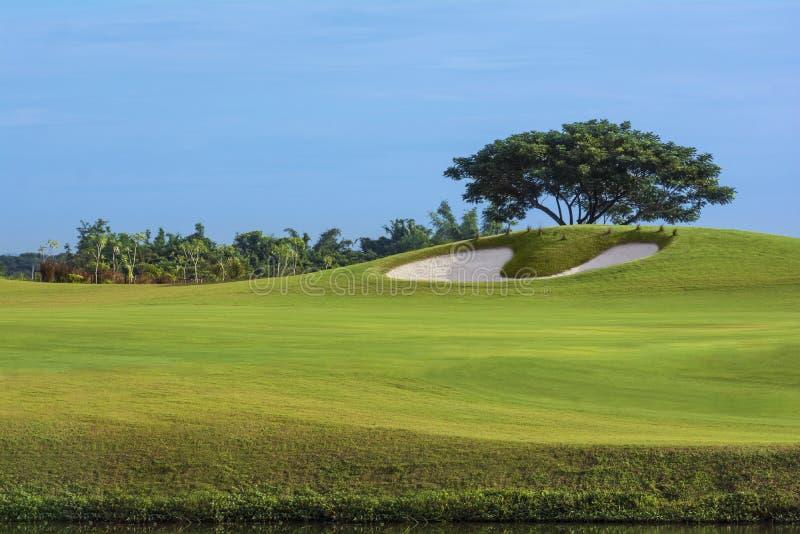 Пейзаж дерновины красивого зеленого цвета поля для гольфа естественный стоковое изображение rf