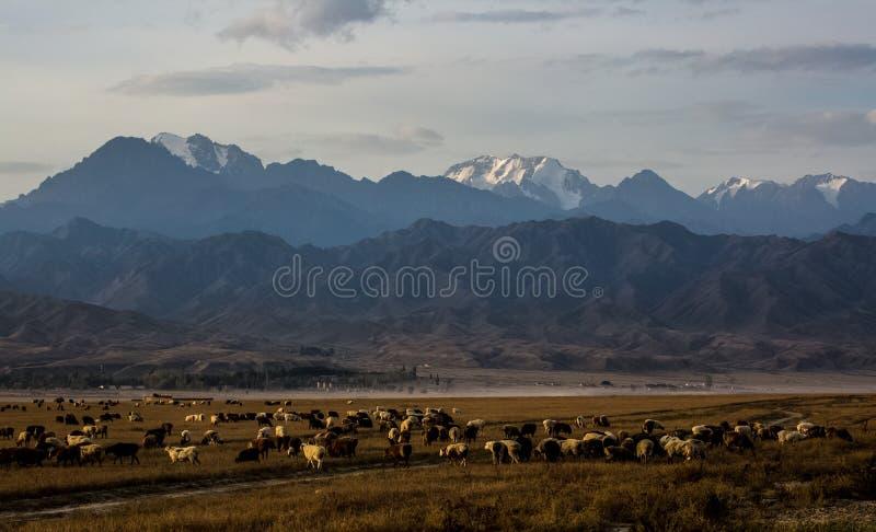 Пейзаж деревни Синьцзян Hemu стоковое изображение rf