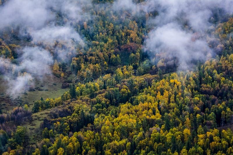 Пейзаж деревни Синьцзян Hemu стоковая фотография