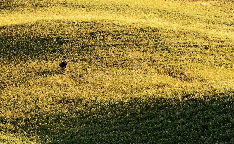 пейзаж земледелия стоковая фотография