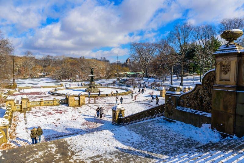 Пейзаж зимы в центральном парке Нью-Йорка с льдом и снегом, США стоковое фото rf