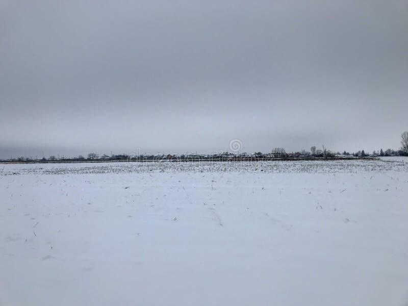 Пейзаж зимы от румынской деревни в зиме стоковая фотография rf