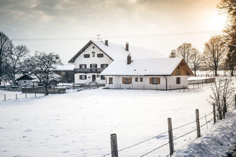 Пейзаж зимы стоковая фотография
