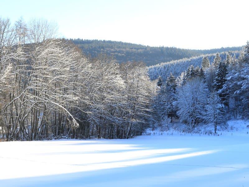 Пейзаж зимы стоковое изображение rf