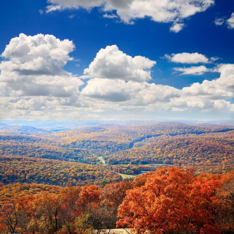 Пейзаж листва от вершины горы медведя стоковое фото