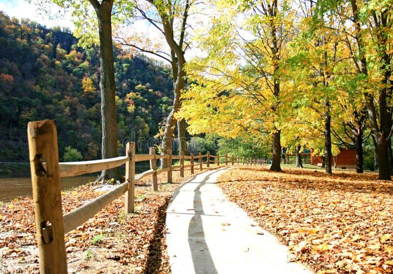 пейзаж листва стоковое изображение