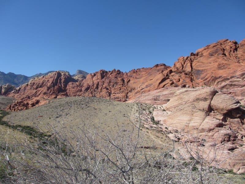 Пейзаж на утесах красного цвета в Неваде около Лас-Вегас, США стоковое фото rf
