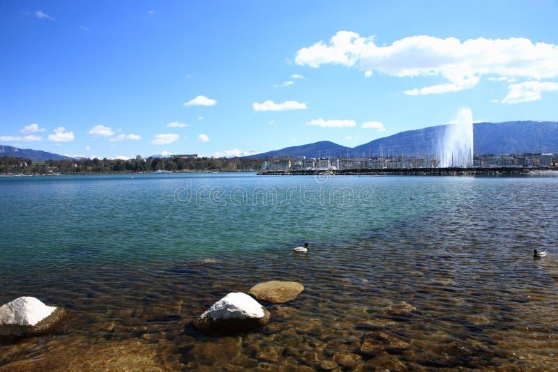 пейзаж озера стоковое фото rf