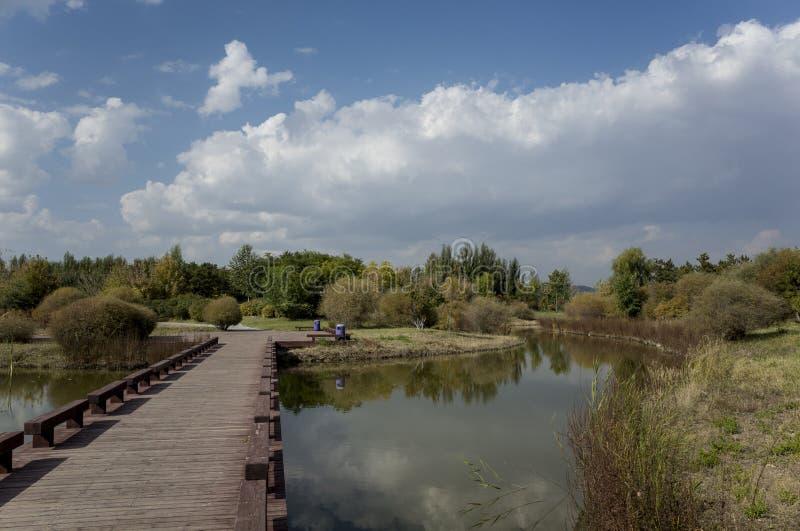 Пейзаж озера Wen Ying стоковое изображение rf