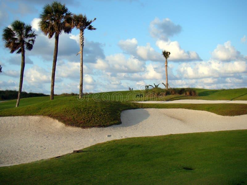 Пейзаж поля для гольфа равенства 3 Palm Beach, Флорида стоковые фотографии rf