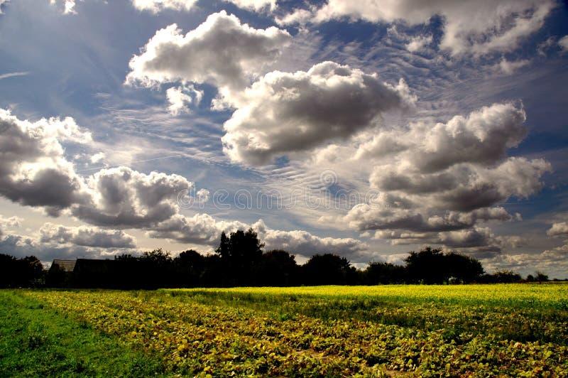 пейзаж Стоковое фото RF