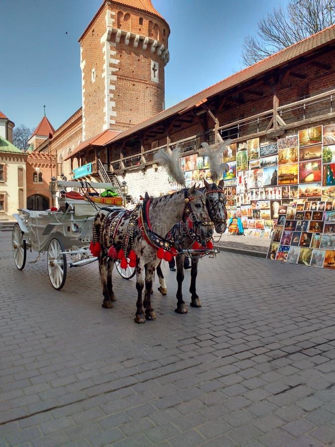 Пейзаж Cracow стоковое изображение