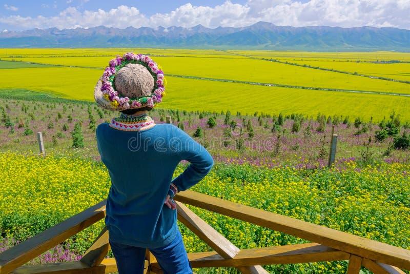 Пейзаж Menyuan стоковые фотографии rf