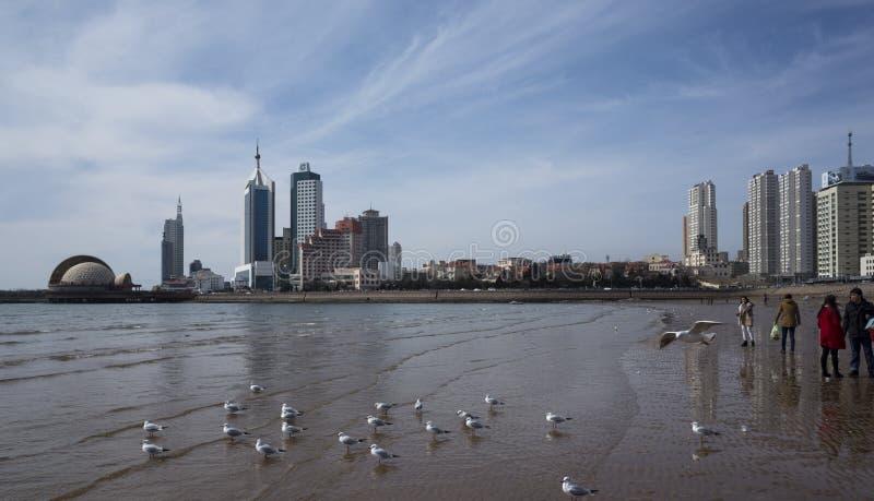 Пейзаж Qingdao стоковые изображения rf