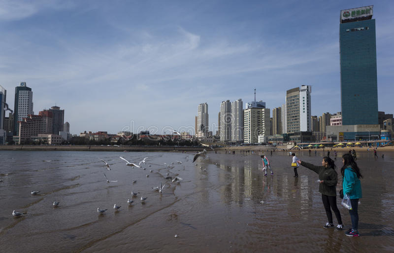 Пейзаж Qingdao стоковые изображения