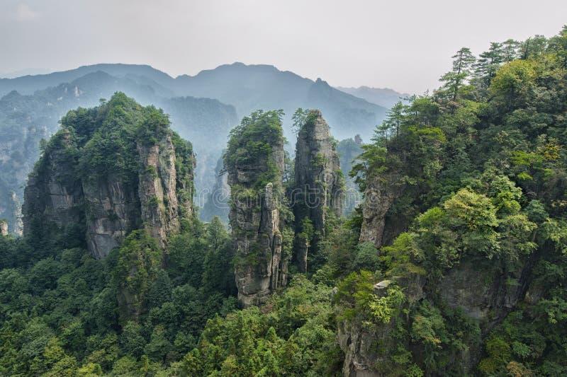 Пейзаж Zhangjiajie естественный стоковые фотографии rf