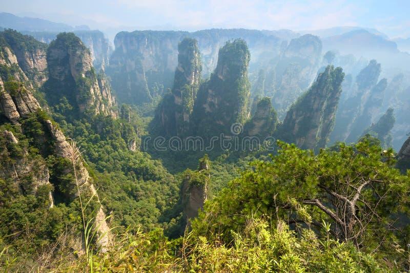 Пейзаж Zhangjiajie естественный стоковая фотография