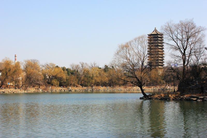 Пекинский университет стоковое изображение rf