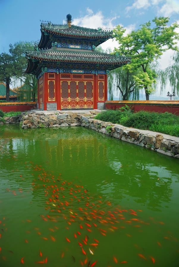 Пекин стоковые фотографии rf