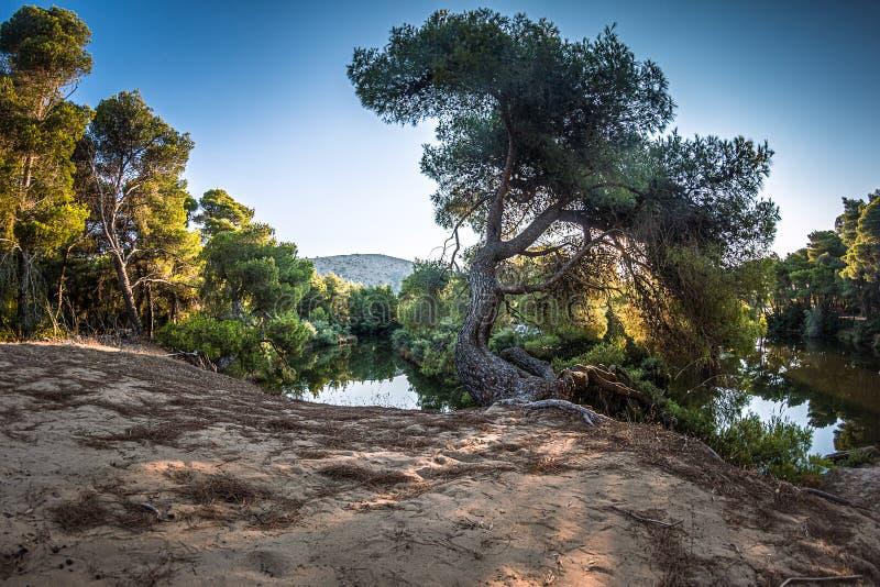 Пелопоннес - полуостров и историческая земля в Греции стоковое изображение rf