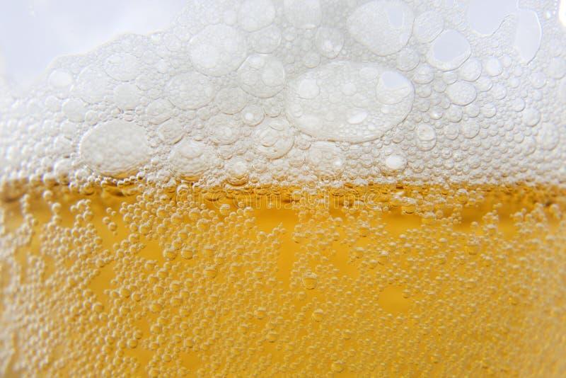 Пена и пузыри макроса пива стоковые фотографии rf