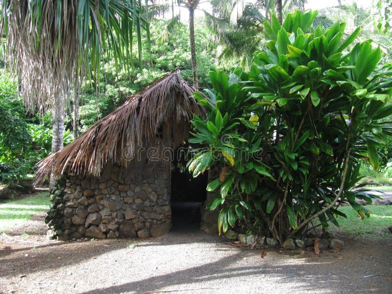 Первоначально гаваиское жилище на деревне Kamokila гаваиской, Кауаи, Гаваи стоковые изображения rf