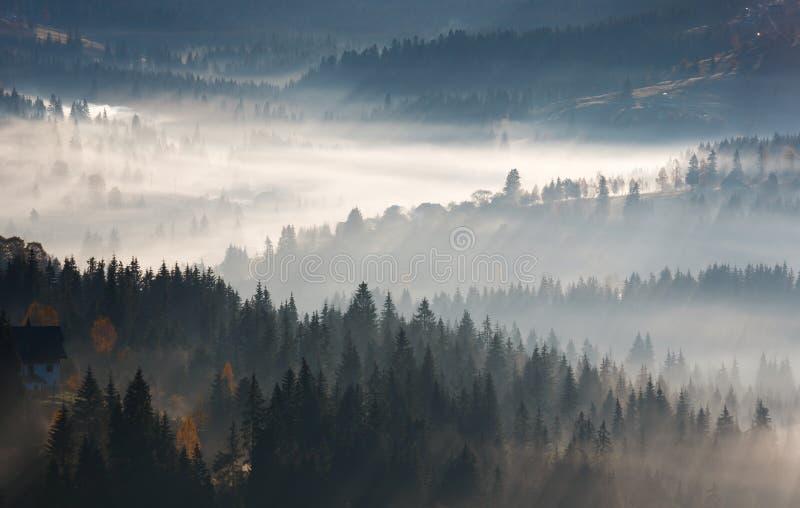 Первые лучи восхода солнца солнца в прикарпатских горах стоковое фото