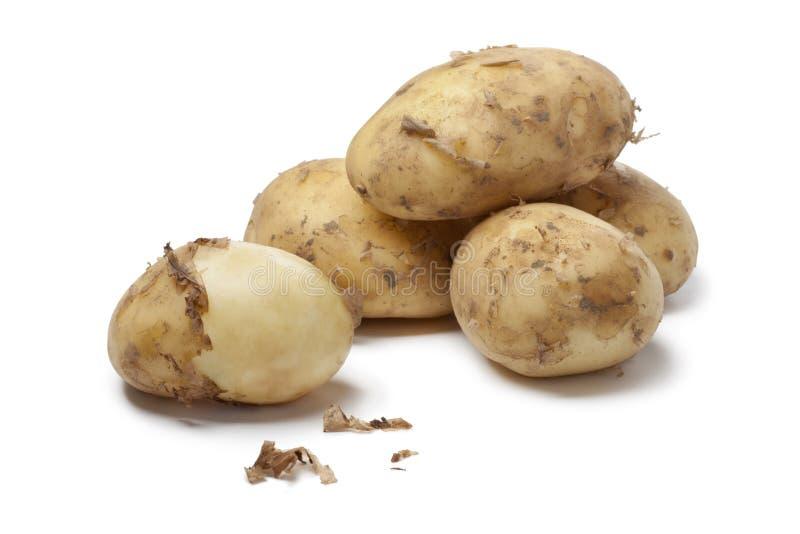 первые новые картошки стоковое фото