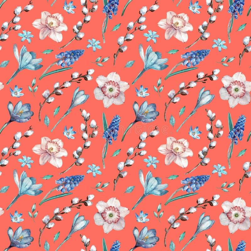 Первые цветки весны и ветви вербы Картина акварели безшовная на живя предпосылке коралла иллюстрация вектора