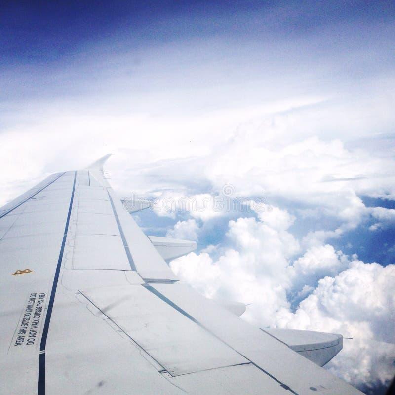 Первый полет стоковая фотография rf