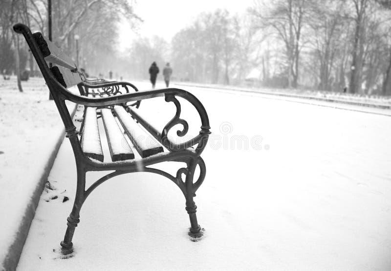 Первый снег в Городском парке стоковая фотография rf
