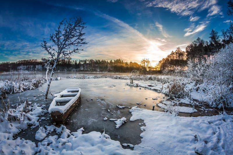Первый снег на восходе солнца в зиме стоковая фотография