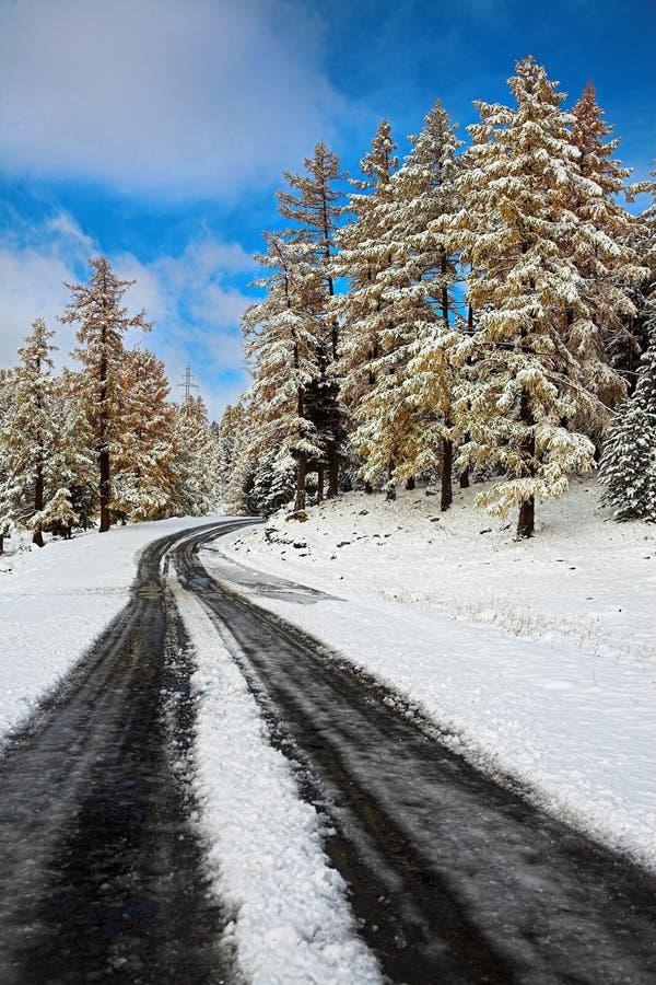 первый снежок пропуска горы стоковые изображения rf
