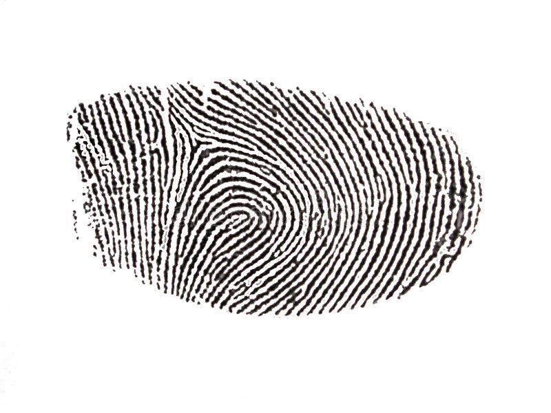 переведенный в цифровую форму фингерпринт иллюстрация штока