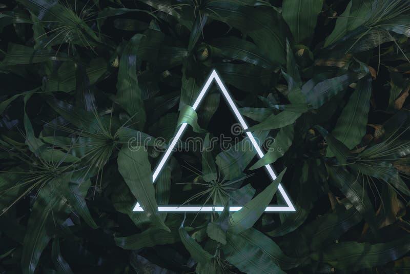 перевод 3d облегчить неоновый треугольник с заводами мозоли Плоское положение минимальной концепции стиля природы бесплатная иллюстрация