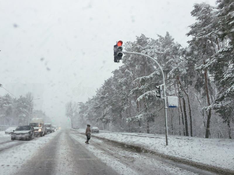 Передвижная фотография движения в шторме снега стоковые изображения rf