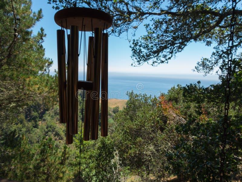 Перезвон ветра, большое Sur, Калифорния стоковые фотографии rf