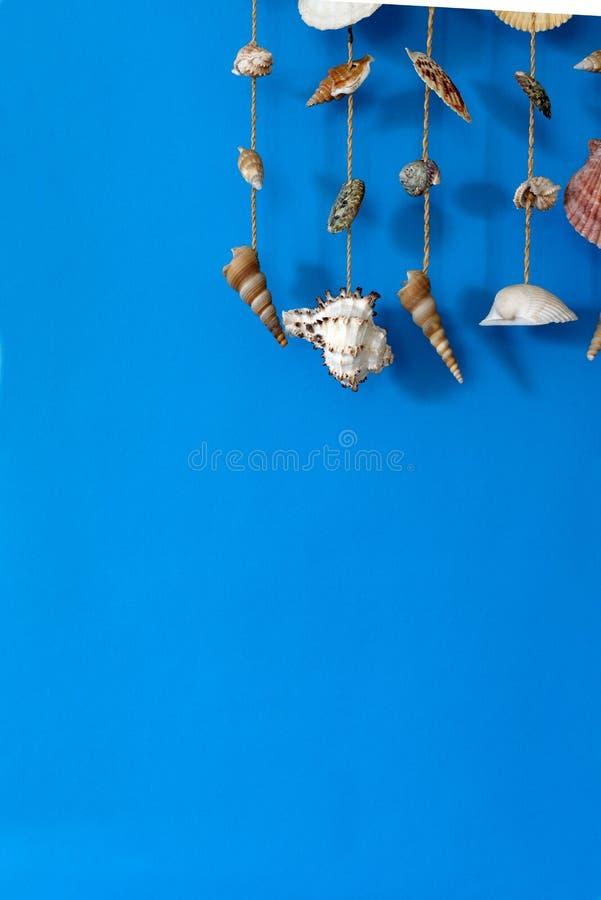 Перезвон ветра с раковинами стоковое изображение rf