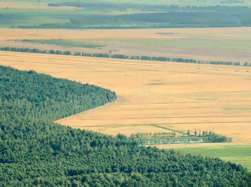 Перекрестки и поля стоковое фото rf