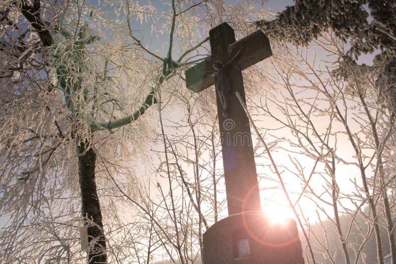 перекрестная зима стоковое изображение