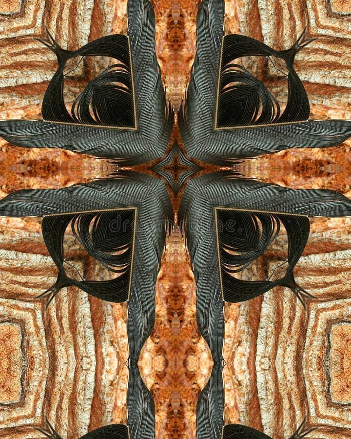 перекрестное перо вороны стоковые фотографии rf