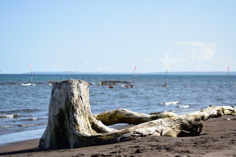 Перемещайтесь деревянное затемните взгляд людей купая на море стоковые изображения
