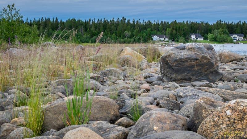 Перемещение в северной Швеции на пляже стоковое изображение rf