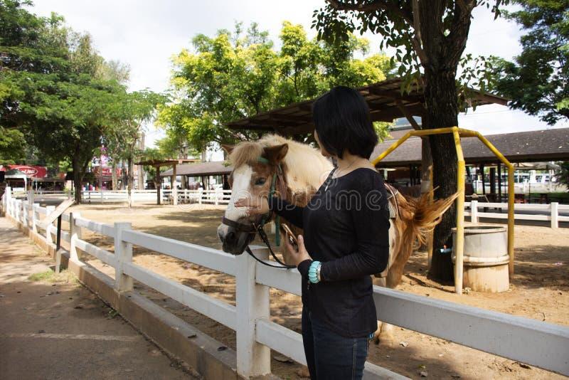 Перемещение женщины путешественника тайское и представлять для фото взятия с положением лошади карлика ослабляют в конюшне на ско стоковое фото