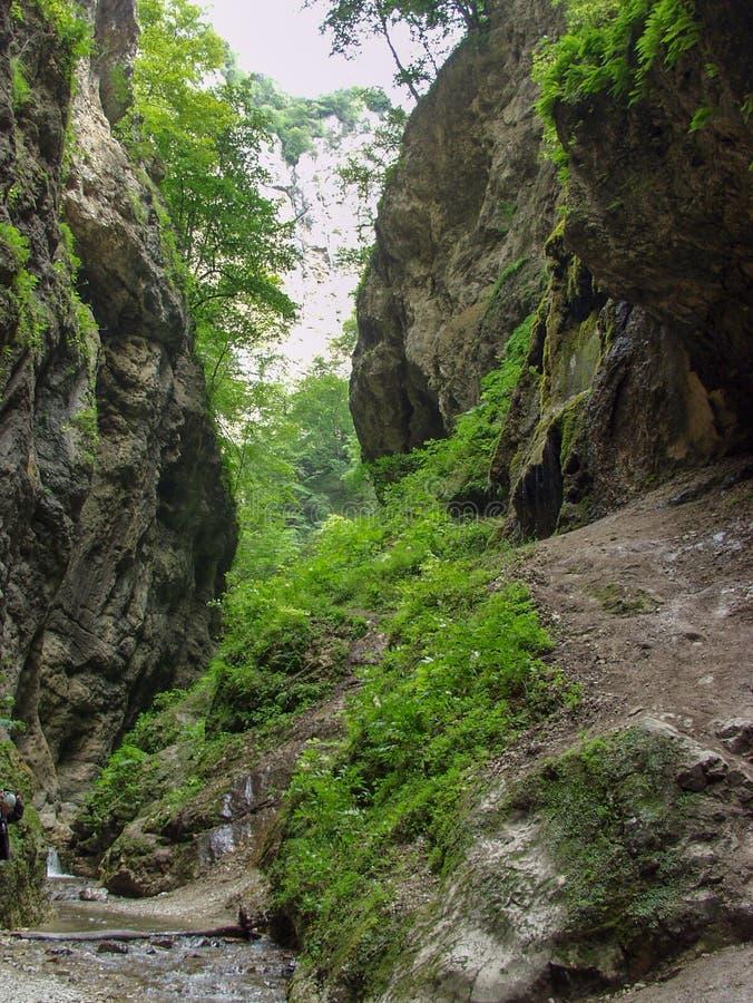 Перемещение к горам Кавказ в Kabardino-Balkaria стоковое фото